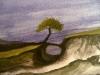 25-tree of circleness
